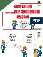 OHSAS 18001 GIDSCHARLA (1)