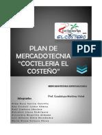 plan mercadologico_ vichel.docx