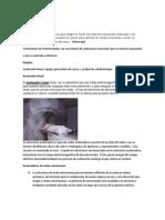 Radioterapia externa