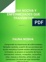 FAUNA NOCIVA Y ENFERMEDADES QUE TRANSMITEN.pptx