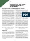 Fertilizacion Fosforica Del Coffea Arabica II