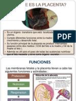 Semiologia de La Placenta