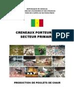 Production de Poulet de Chair