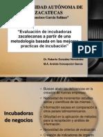 Evaluación de incubadoras zacatecanas (presentacion b)