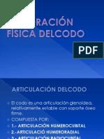 exploracinfsicadelcodo-110130194816-phpapp01