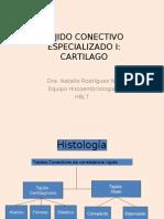 Histologia Clase 8 Cartilago.ppt