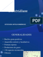 diapositivasclostridium-100428155442-phpapp02