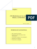 Acidos Biliares y Bilirrubina