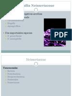 familianeisseriaceae-ppt2012-121011190144-phpapp01