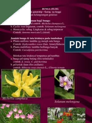 Botani Bunga Pp Catkulspti For Farmasi