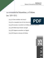 TEMA25.pdf