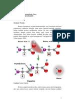 Struktur Protein