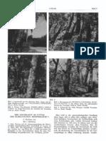 EK_1951-05-4-05