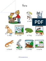 Pets Vocabulary