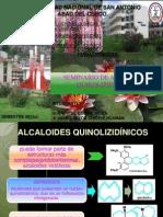 ALCALOIDES QUINOLIZIDINICOS PRESENTACIONn