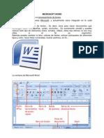 Microsoft Word y Sus Barras