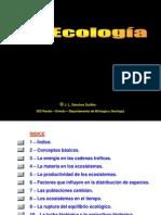 PDF_07 (1)