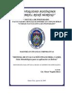 Modelo de Evalución Financiera CAMEL