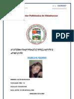 proyecto de vanesa paper.docx