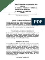 LAS MEDIDAS DE COERCIÓN I