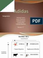 Adidas Lorena Pilco