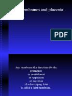 Fetal Membranes and Placenta