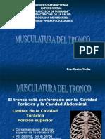 Tema 6 Musc. Del Tronco y Canales Vertevrales