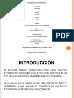 Aporte_Tracol 3_ClaudiaQuiñones