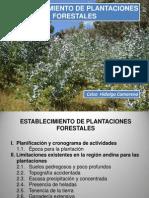 Establec. de plantaciones (C-5).ppt
