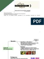 Microbiologia_Alimentos_Resumen