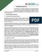 Cap Resumen Ejecutivo Impacto Ambiental Proyecto Pto Cruz Grande