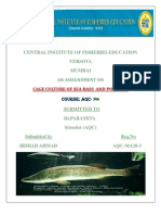 irshad Ahmad cife Sea Bass and Pomfret Culture .