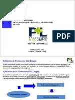 Produccion Mas Limpia Para El Sector Industrial - Sistemas de Gestion Ambiental