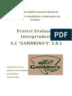 Proiect Evaluarea Întreprinderii