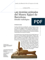 ARTICULO_MOMIAS_ANIMALES_PAMPLONA.pdf