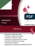 Anatomia II (Sangre)