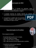 VASCULARIZAÇÃO DO SISTEMA NERVOSO CENTRAL 2.pptx