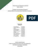 Laporan Pl 09 Demam Tifoid