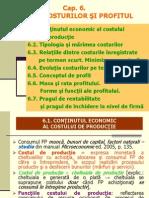 Cap 6-Prezentare-teoria Costurilor Si Profitul