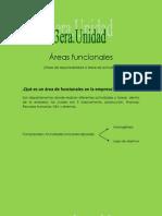 Áreas funcionales ICG