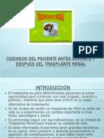 Cuidados después del trasplante renal