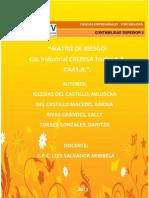 PERFIL - matriz.docx