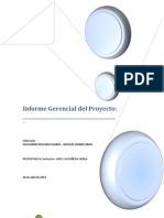 Informe Gerencial Proyecto Avance