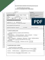 registrodevaloracinporpatronesfuncionalesdesalud-111103073522-phpapp01