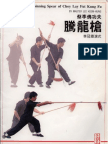 The Spinning Spear of Choy Lay Fut Kung Fu - Master Lee Koon Hung 2002