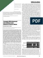 Transgenic DNA in Native Mexican Corn