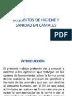 Requisitos de Higiene y Sanidad en Camales