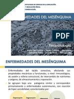 ENFERMEDADES DEL MESÉNQUIMA (97-2003)