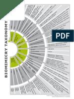 Biomimicry Taxonomy