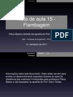 FLAMBAGEM - UFJF